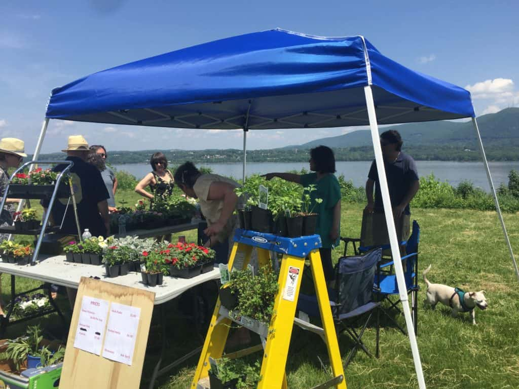 Newburgh Heights Association Flower Sale Fundraiser on Bayview Terrace overlooking the Hudson